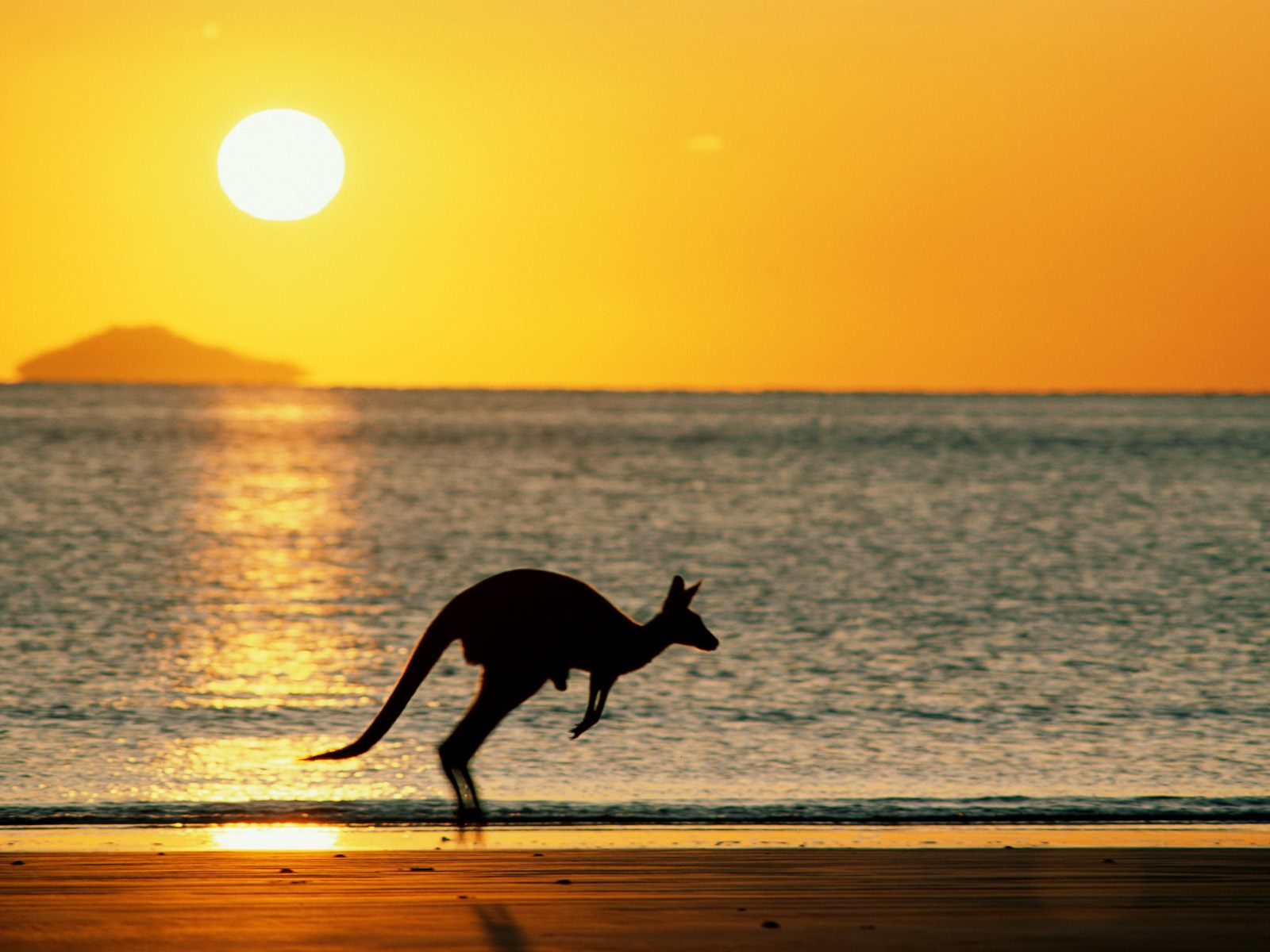 How Much Does It Cost To Vacation In Australia Whats The Cost - Vacation to australia